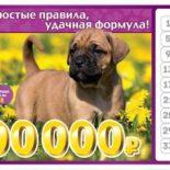 Лотерея «6 из 36» 143 тираж — проверить билеты