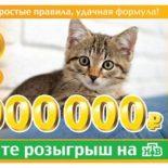 Лотерея «6 из 36» 156 тираж: проверка билетов, результаты