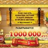 Лотерея «Золотая подкова тираж 50» проверить билет за 14 августа 2016